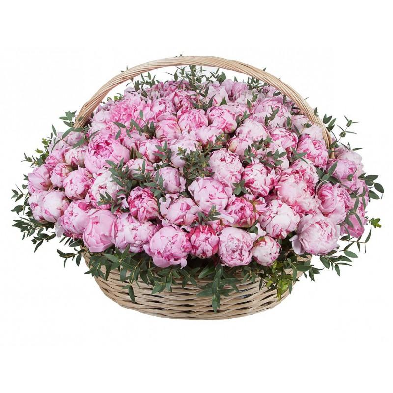 Цветочная композиция из пионов «Sarah Bernhardt»