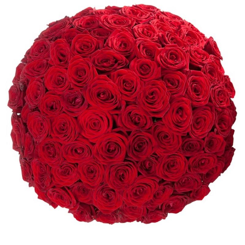 Круглый букет из красных роз