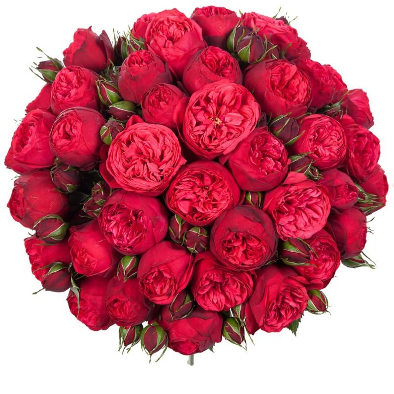 Букет из Роз Пиано
