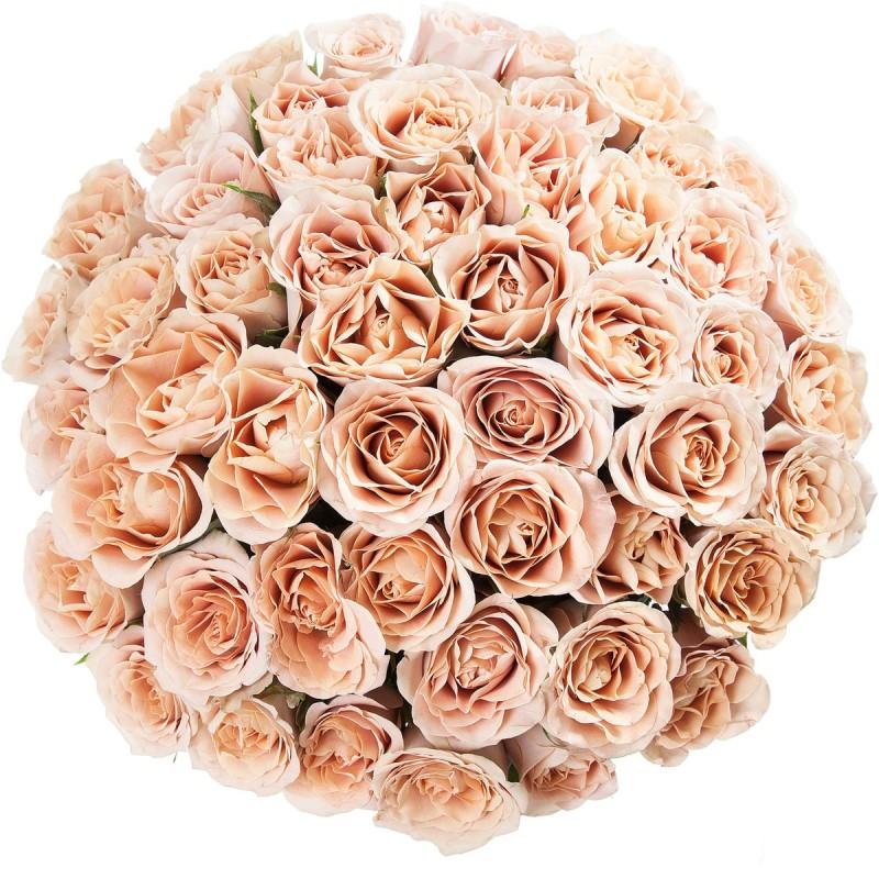 """Букет из кремовых роз """"Cappucino"""""""